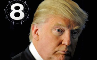 Donald Trump – Type 8