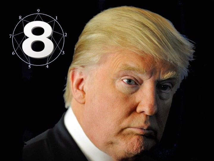 Donald Trump – Type 8